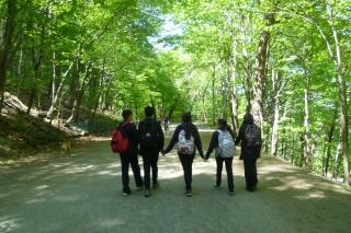 Sortie au Mont Royal